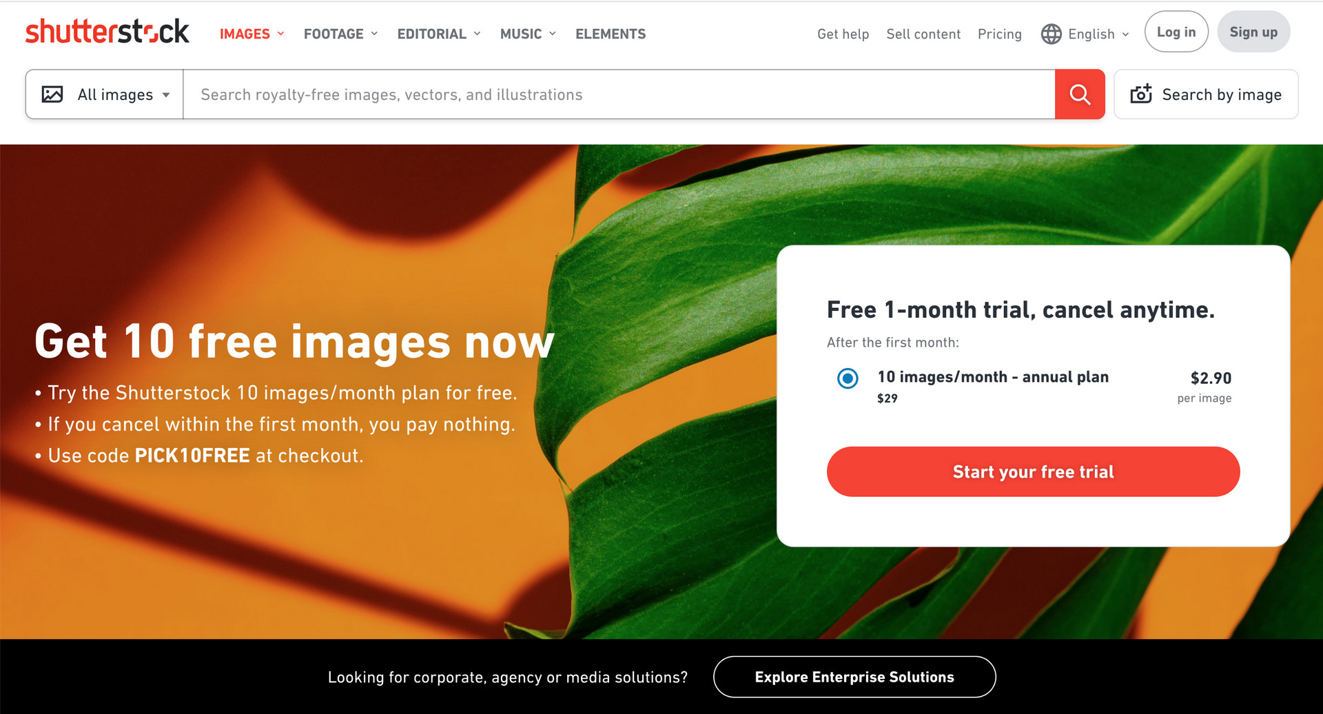 Shutterstock website